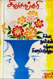 Chinna Noolkanda Nammai Siraipaduthuvathu By Sivasankari